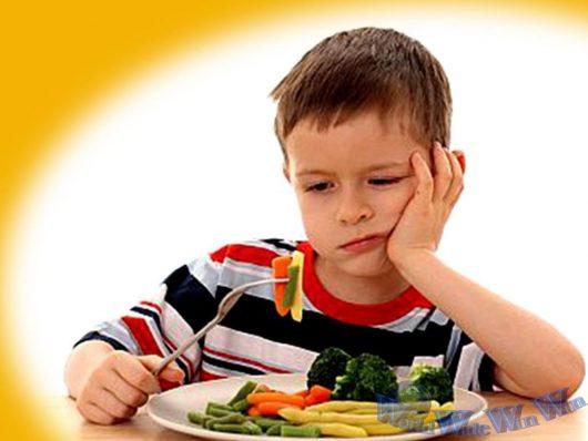 Trẻ biếng ăn là câu chuyện diễn ra hàng ngày gây nên áp lực rất lớn cho cha mẹ