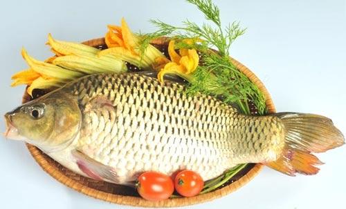 Cá chép chứa nhiều DHA và rất tốt cho mẹ trong giai đoạn mang thai