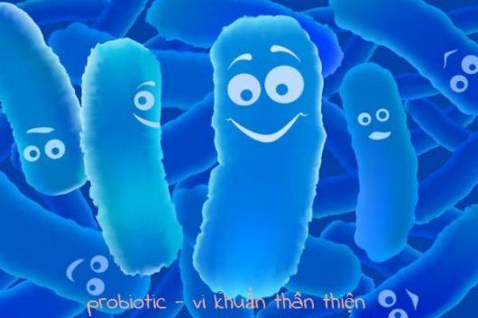 loi-khuan-probiotics-trong-men-vi-sinh-brauer