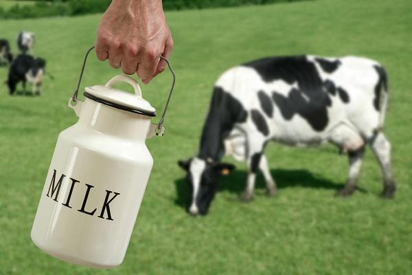 Trẻ sơ sinh không nên dùng sữa bò